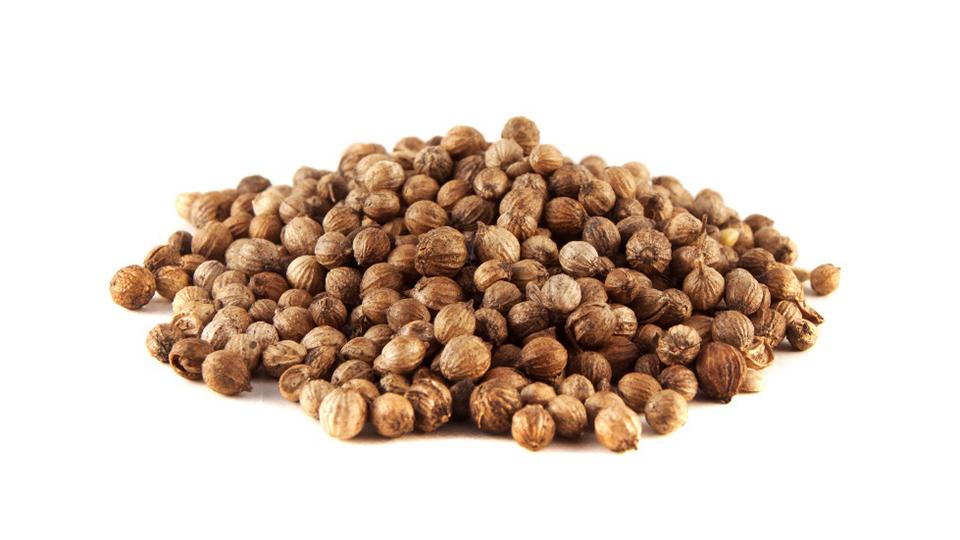 Coriander, seed